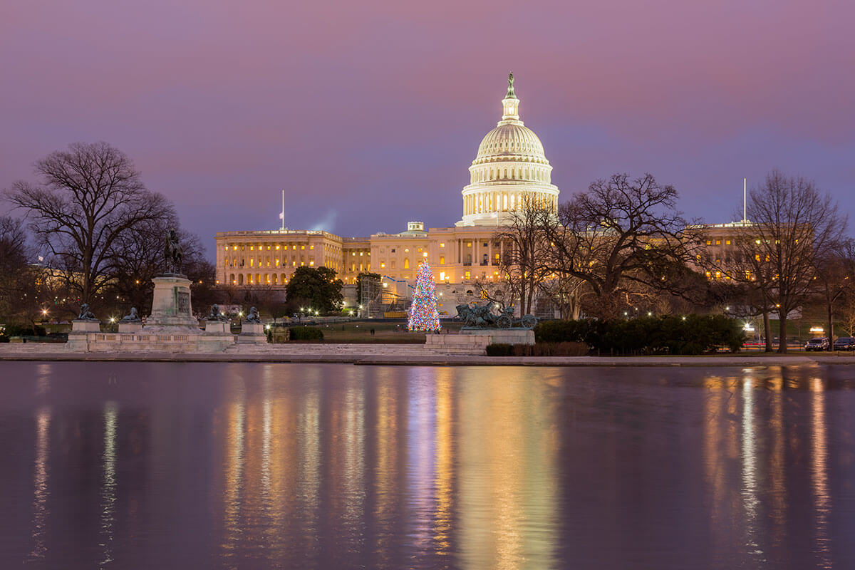 Washington DC Tours Voted #1   See The Best First With Old ...